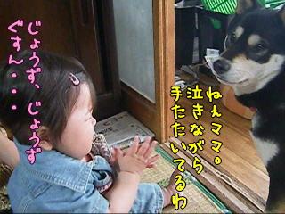 20090610_10.jpg