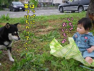 20090610_11.jpg