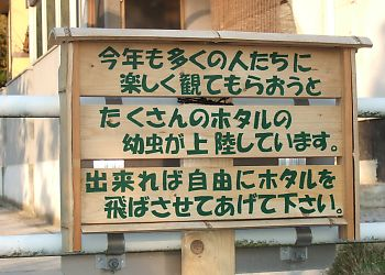 s_007_20090518220005.jpg