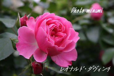 s_020_20090605083650.jpg