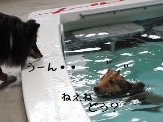 2009060321.jpg