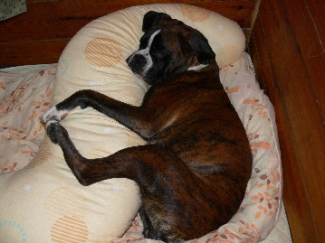 枕ティン2