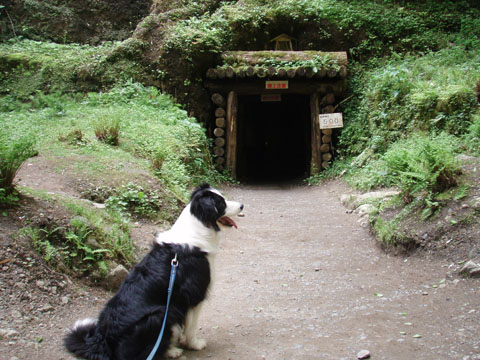 龍源寺間歩の入り口