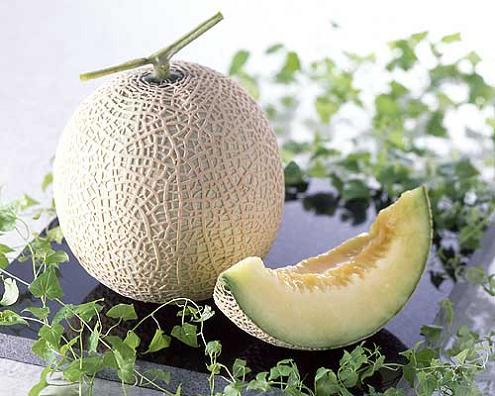 melonmelon