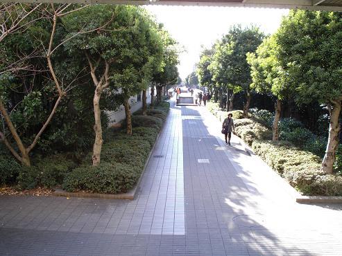 shinyuri201.jpg
