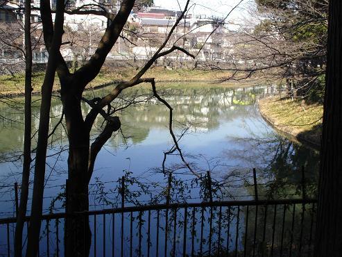 shinyuri210.jpg