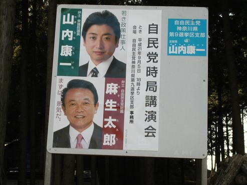 shinyuri211.jpg