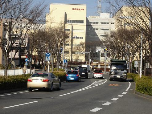 shinyuri223.jpg