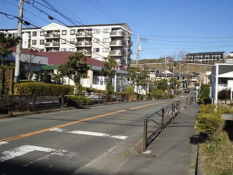 shinyuri25