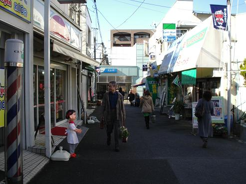 shinyuri309.jpg