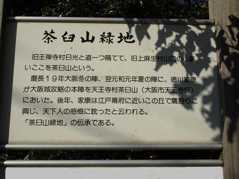 shinyuri320.jpg