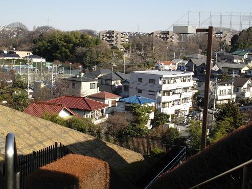 shinyuri322.jpg