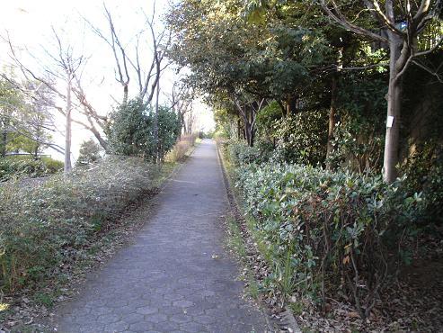shinyuri531.jpg