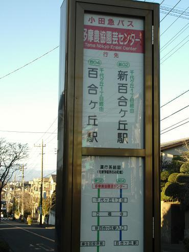 shinyuri66.jpg