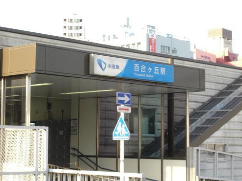 shinyuri751.jpg