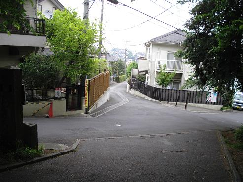 shinyuri758.jpg