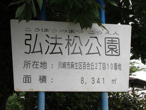 shinyuri851.jpg