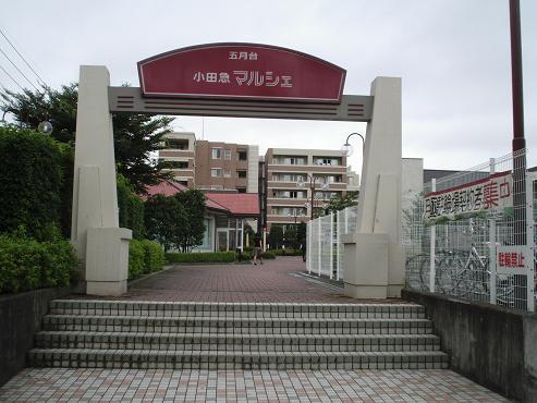 shinyuri956.jpg