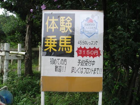 shinyuri973.jpg