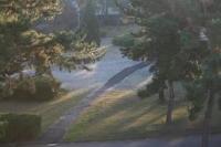 2008年初霜