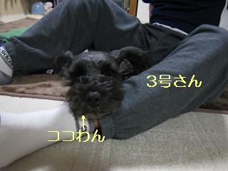 甘えん坊2
