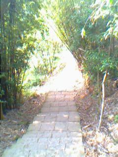 20090222 陽明山 01