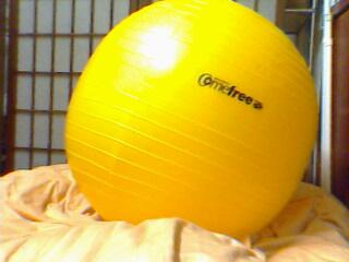 20090315 球