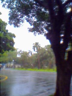 20090615 大雨02