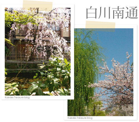09-04-11sirakawa.jpg