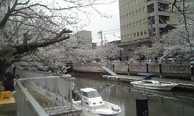 200903261.jpg