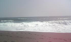 200904094.jpg