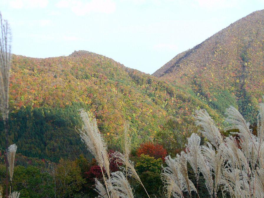 泉ヶ岳10