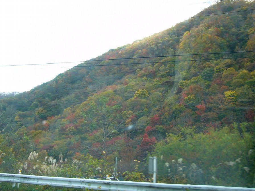 泉ヶ岳11