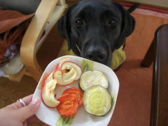 野菜チップとクロ