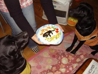 クロあちゃまケーキ