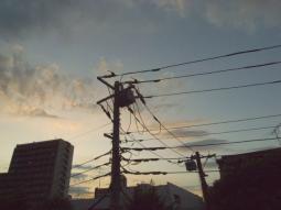練馬の夕焼け