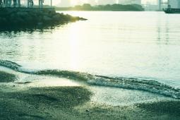 台場の砂浜
