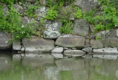 姫路城内濠めぐり6