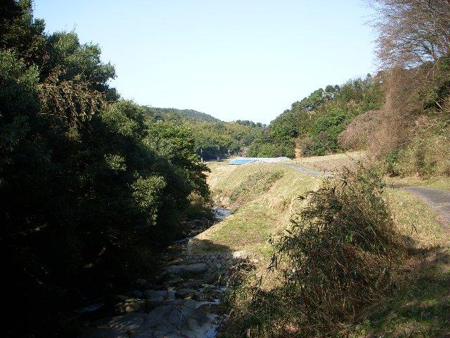DSCN3377.jpg