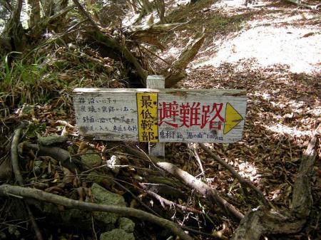 2008.10.19猫の丸尾 059
