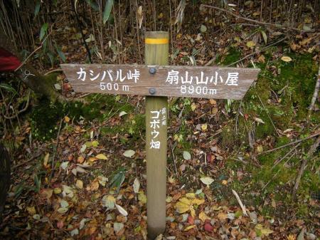 2008.11.2霧立縦走 004