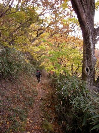 2008.11.2霧立縦走 058