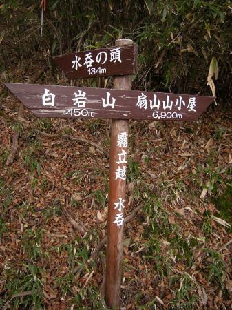 2008.11.2霧立縦走 196