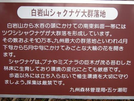 2008.11.2霧立縦走 202