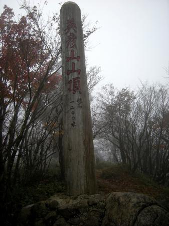 2008.11.9英彦山北西尾根 177
