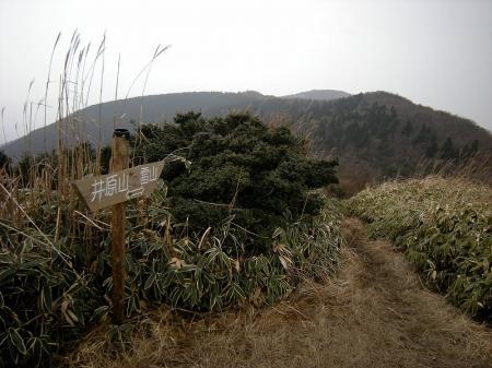 2009.2.11井原~雷山 026