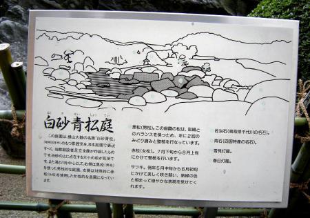 2009.3.20伯耆大山 315