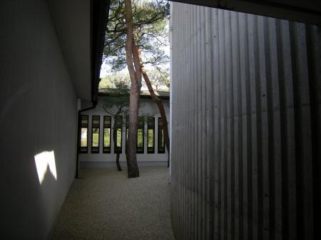 2009.3.20伯耆大山 322