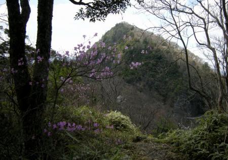 2009.4.11二上山 093