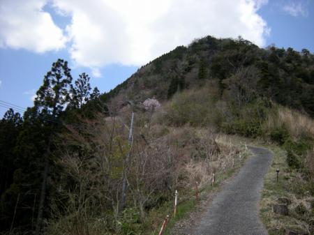 2009.4.11二上山 116